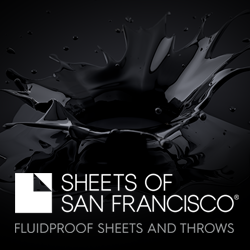 Silver Sponsor   Sheets Of San Francisco
